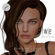 [ west end ] Shapes - Evaluna (Genesis Lab Eva Bento)