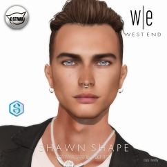 [ west end ] Shapes - Shawn (CATWA Stanley Bento) AD
