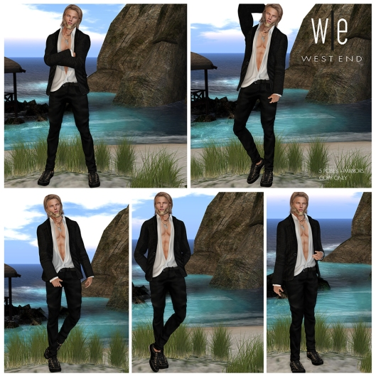 [ west end ] Poses - Male Model Series 02 - Pose Collection - 1000