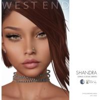 [ west end ] Shapes - Shandra (Genus Classic Bento) AD
